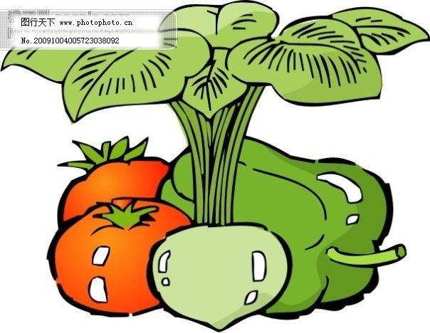 蔬菜矢量图2