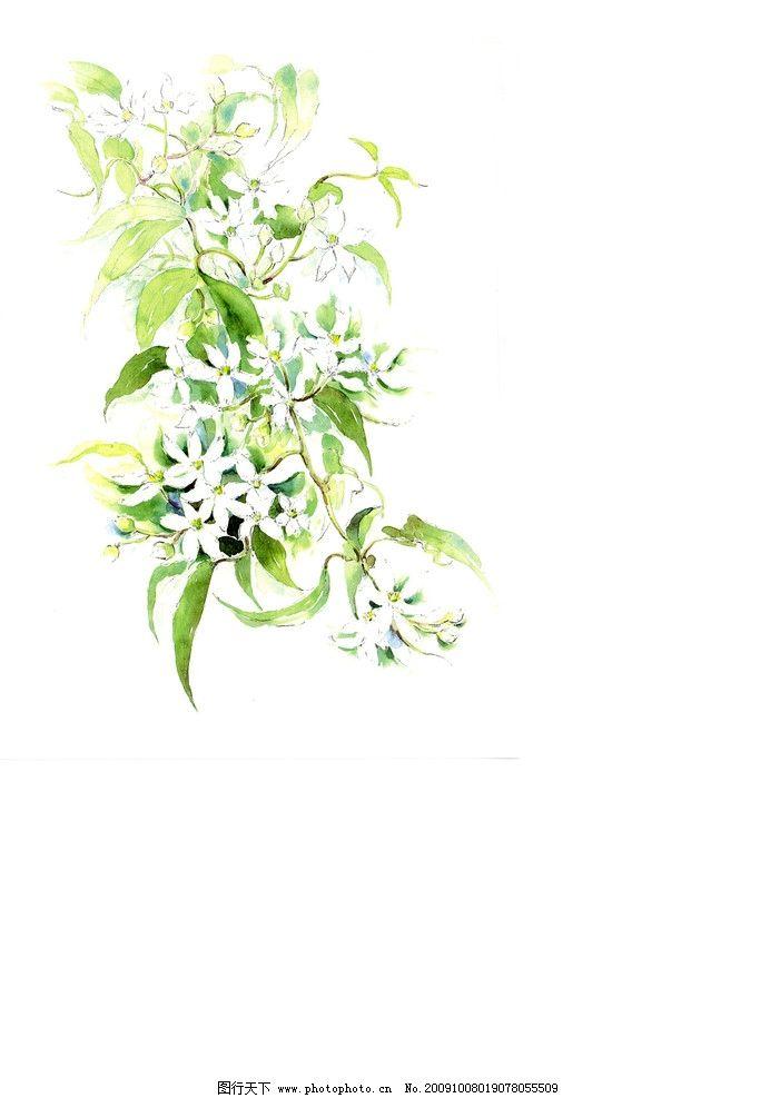 水彩插画 韩国手绘 绘画书法 文化艺术 设计 300dpi jpg