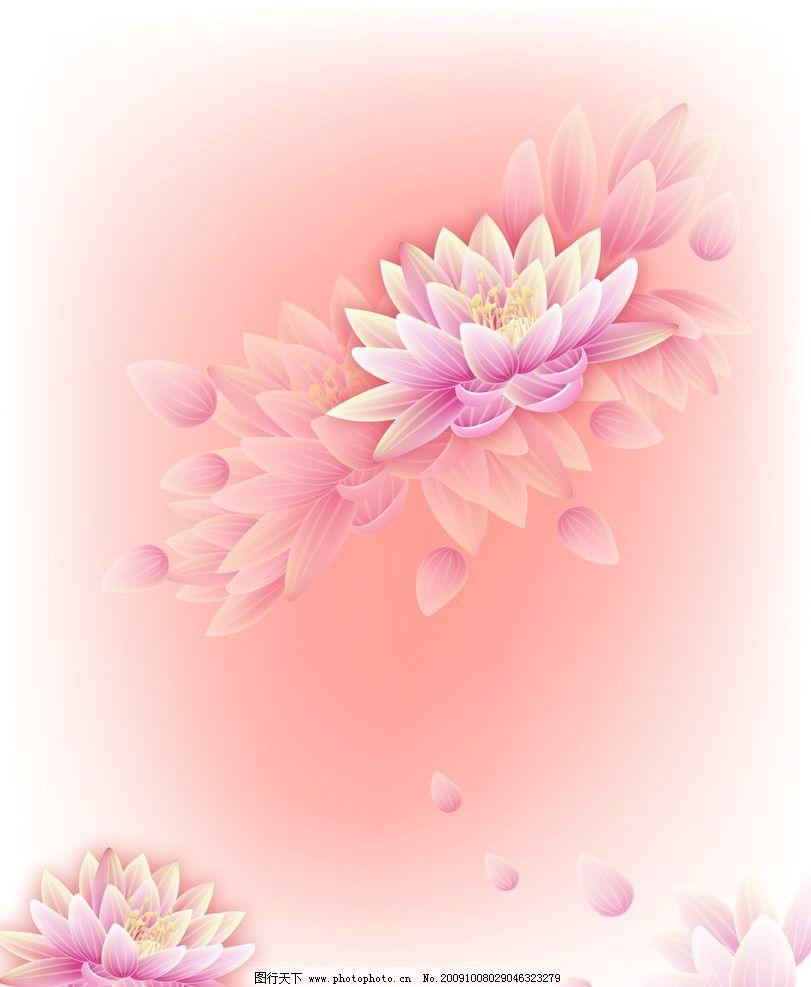 荷花 背景 底纹国 韩式花纹