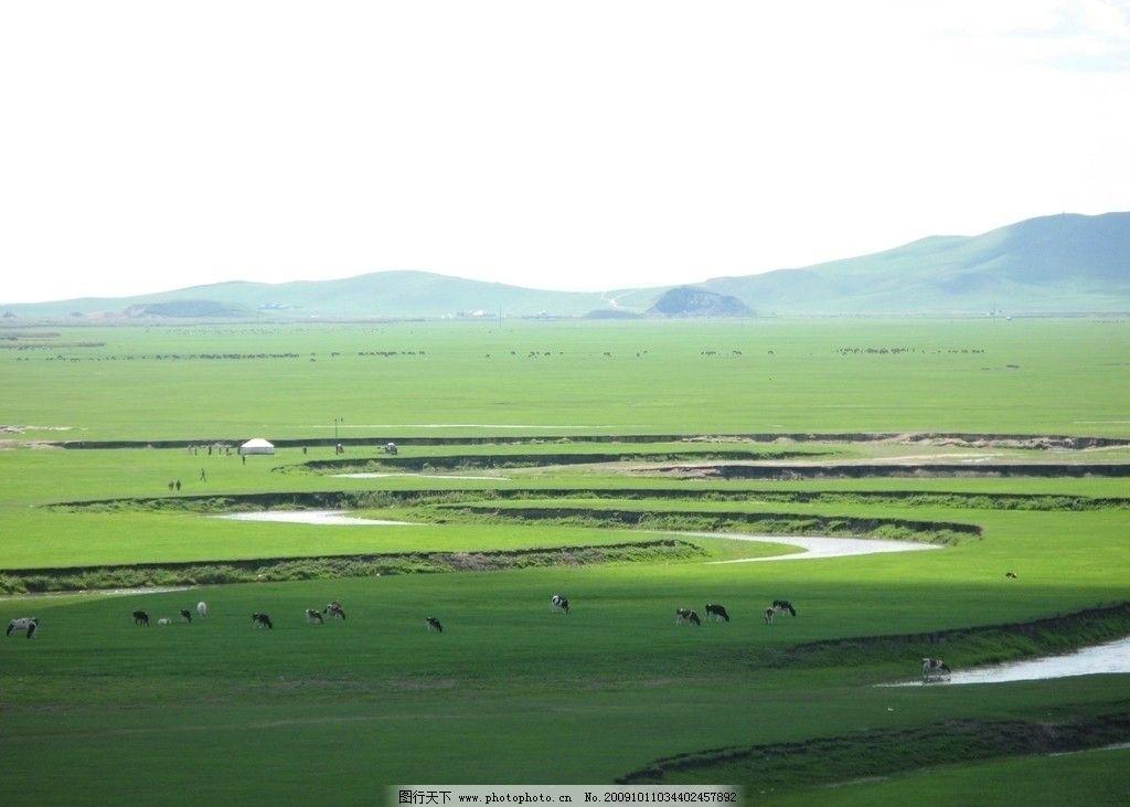 草原羊风景图片大全
