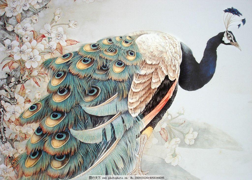 吉祥图 花鸟 花草 凤凰 玉兰 动物工笔画 绘画书法 文化艺术 设计 72