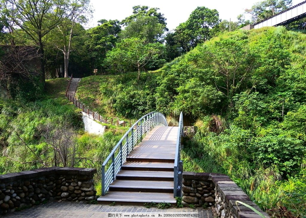 风景图 拱桥 绿树 步道 森林 树木 铁栏 木板 石头 国内旅游