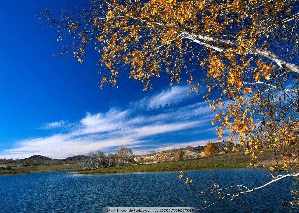秋天 山 湖水 白云 树 湖面 秋天的树 黄的树叶 山水风景 自然景观