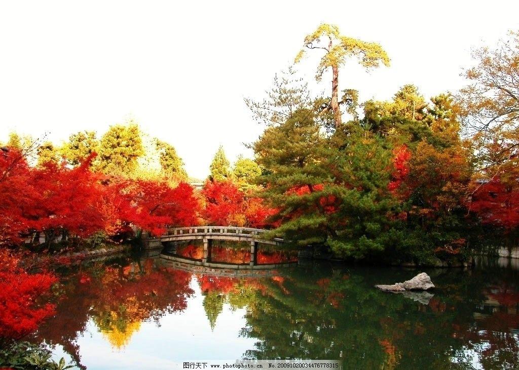 风景 树 水 小桥 山水风景 自然景观 摄影 72dpi jpg