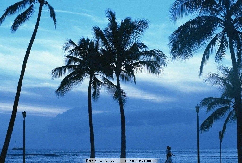 休闲情侣 蓝天 白云 椰子树 沙滩 植物 走道 路灯 船只 大海风景