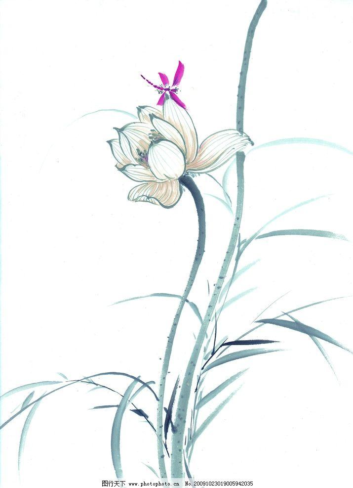 蜻蜓戏荷 蜻蜓 荷花 莲花 国画 水墨画 绘画书法 文化艺术 设计 300