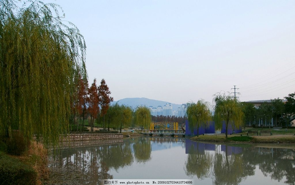 永宁公园 青树绿水 柳树成语 美丽的风景图 山水风景 自然景观 摄影