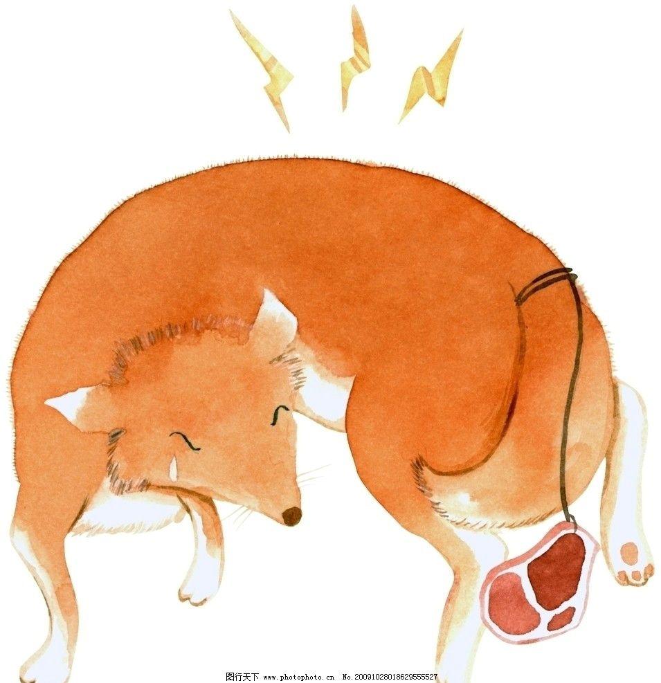 狐狸 动物 儿童画 动漫动画
