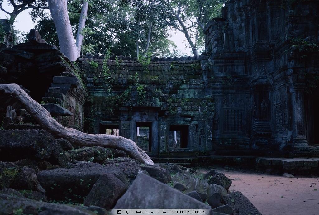 老挝136 老挝风景 树 石头 旅游 风景 国内旅游 旅游摄影 摄影 350dpi