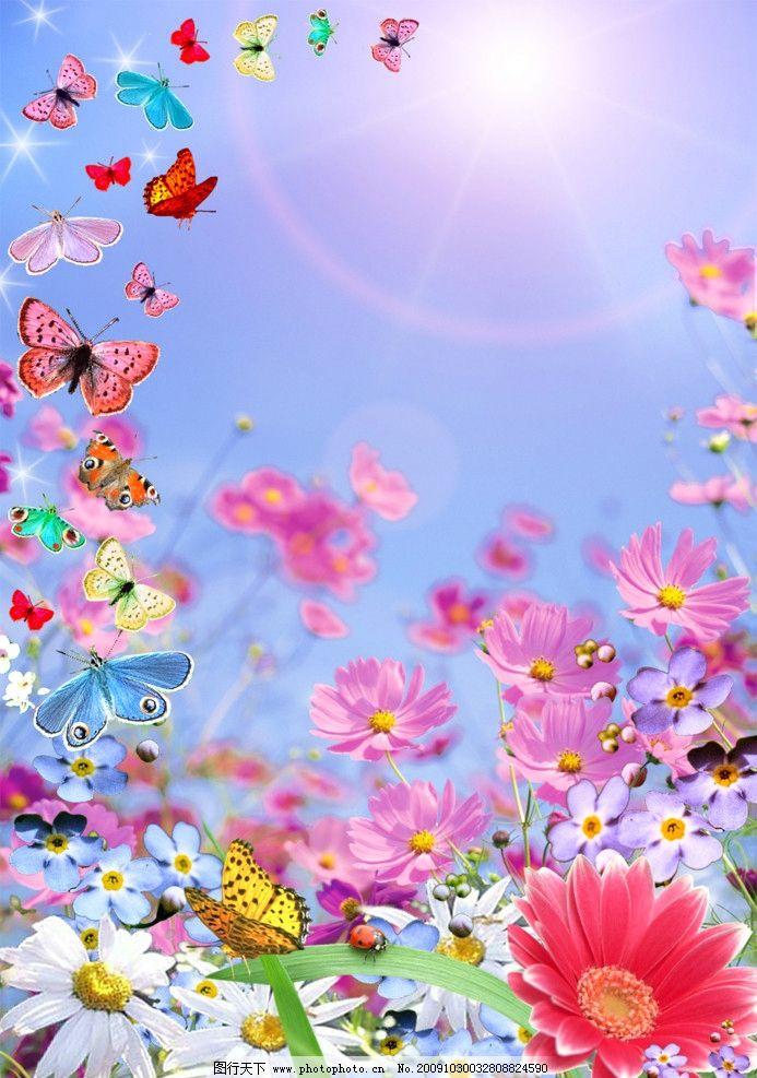 春天 阳光 花 蝴蝶 草 七星瓢虫 彩色 五彩斑斓 菊花 风景 psd分层
