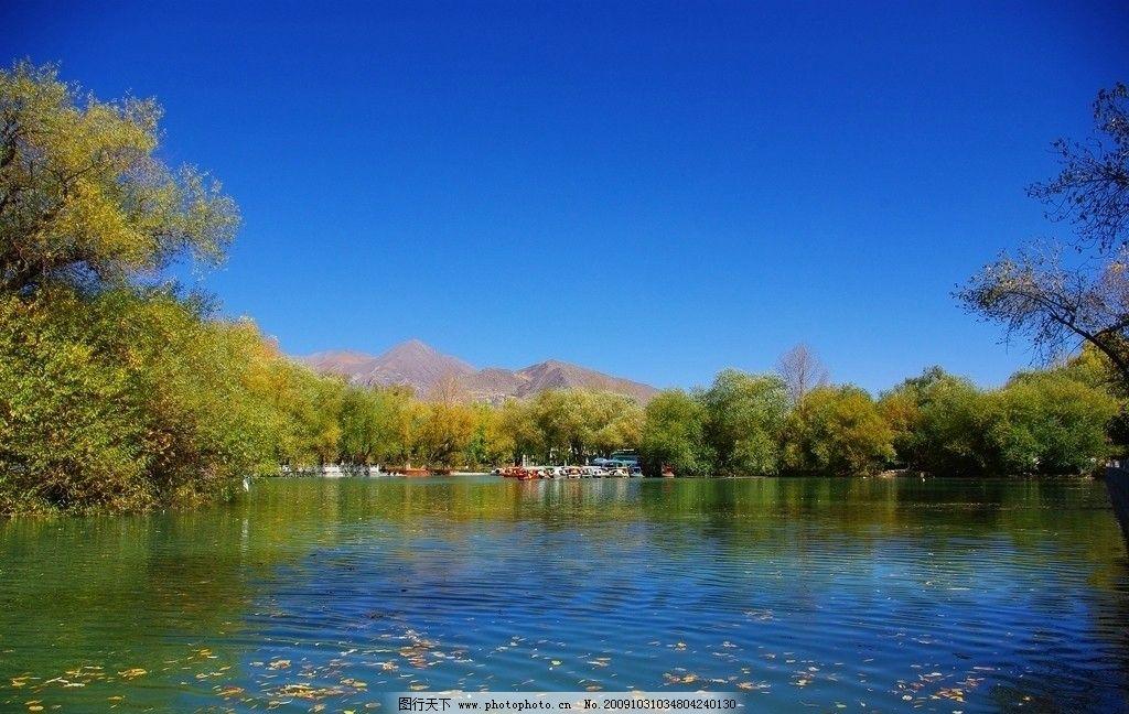 新疆风景 秋图片