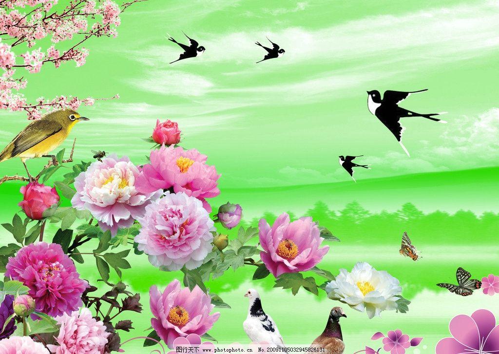 春天背景 牡丹 燕子 黄鹂 和平鸽 花朵 蝴蝶 梅花 天空 背景素材 psd