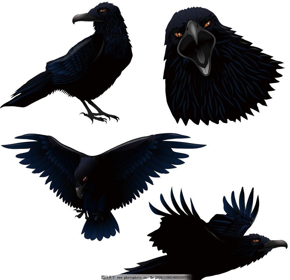 万王之王风景乌鸦雕像