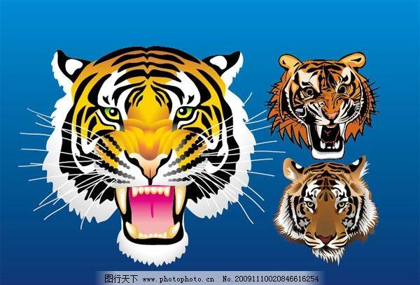 老虎头 老虎 虎头 虎年 2010 动物 矢量素材 纹理 其他 底纹边框 矢量