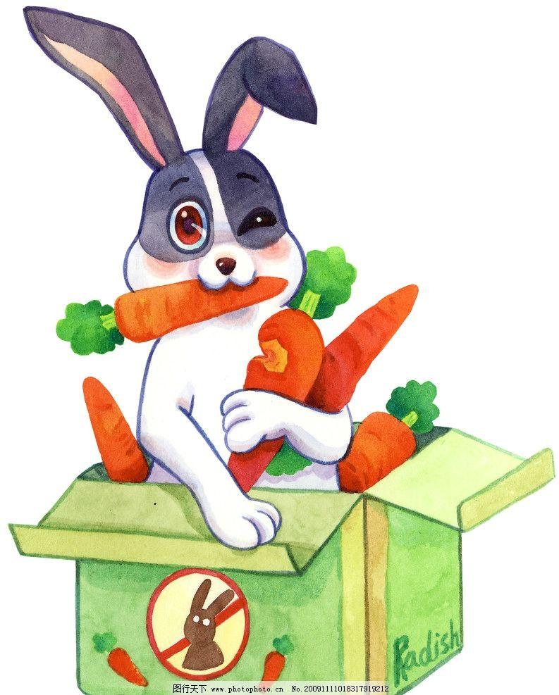 萝卜兔子 动漫人物 卡通