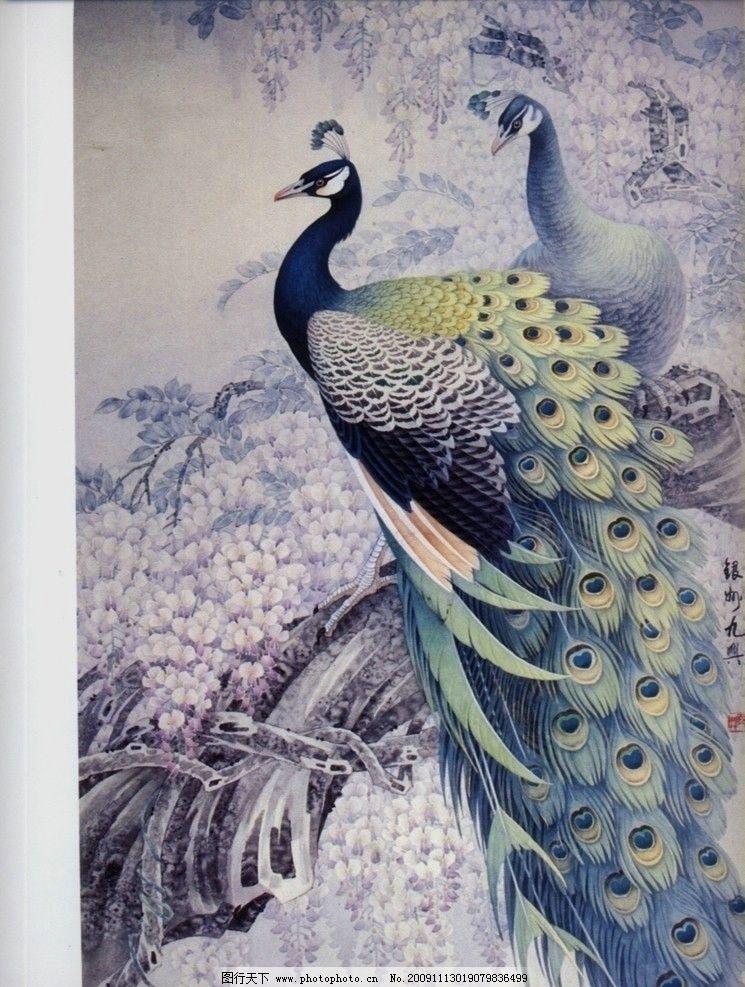 孔雀 绘画书法 文化艺术 设计 100dpi jpg