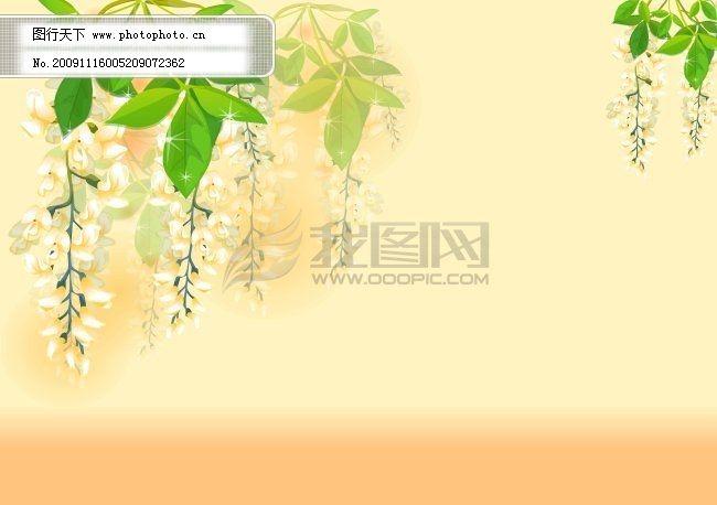 蜂蜜标签免费下载 标签 标签 槐花 洋槐蜂蜜 矢量图 花纹花边