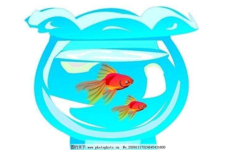 鱼缸 水 金鱼 小鱼 水中鱼 鱼在水中游 矢量