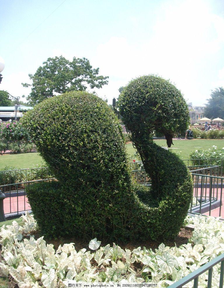植物 园艺 雕塑 造型