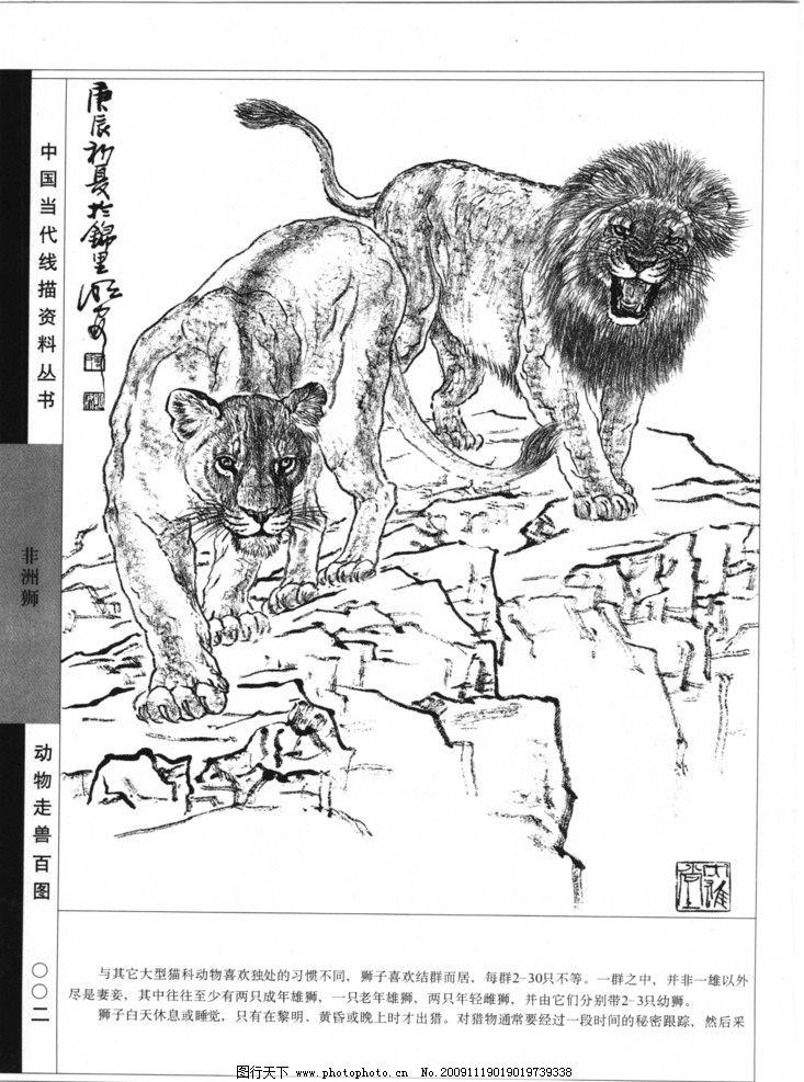 动物联想黑白稿