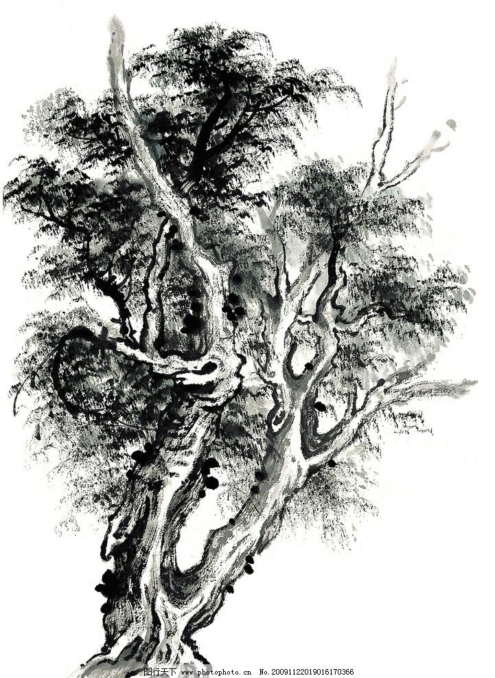 国画树木绘画步骤