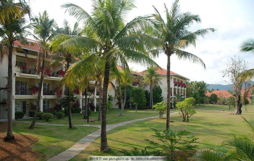 海南风光 椰子树 别墅 草地 建筑物 天空 小路 国内旅游 旅游摄影