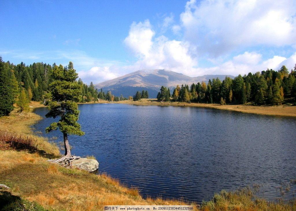 山湖 森林 树根 远景 蓝天 白云 远山图片
