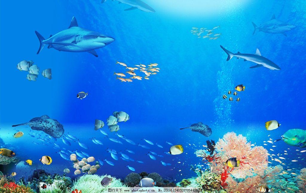 海底世界 鲨鱼 风景 psd分层素材 源文件 300dpi psd