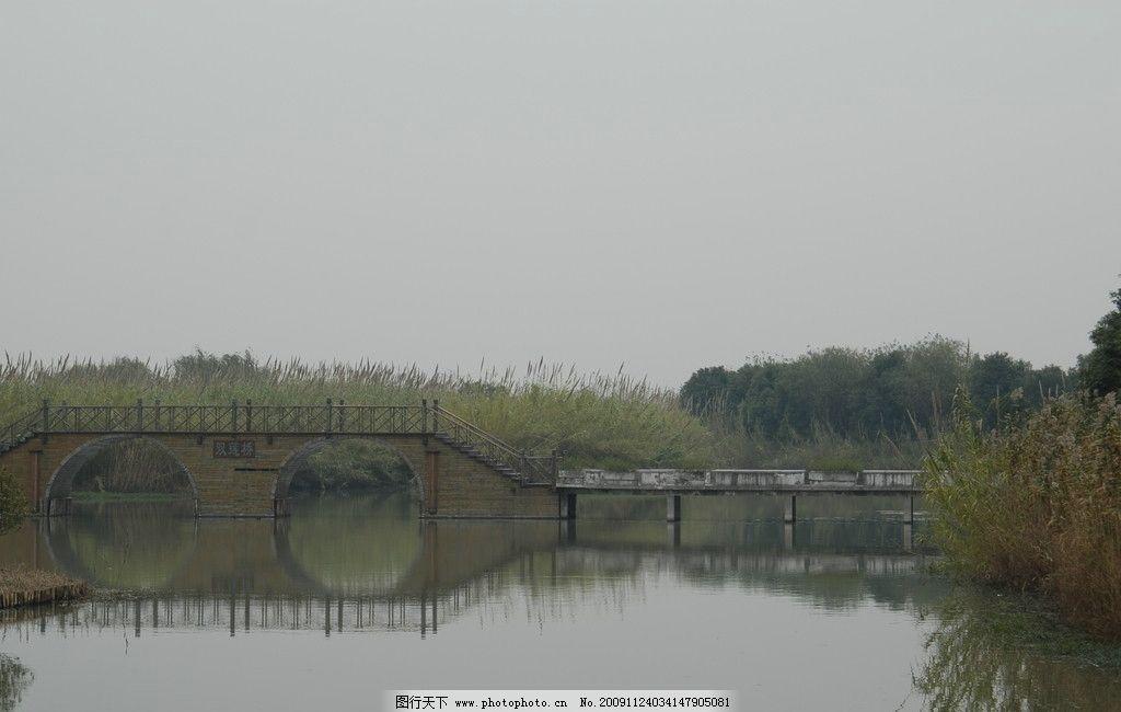 天空 芦苇 水中倒影 湖 波光 小桥 树林 沙家浜 芦苇荡 自然风景 旅游