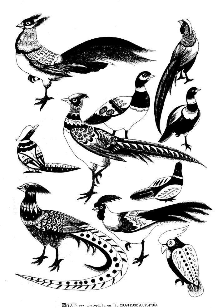 现代装饰动物图案图片_绘画书法_文化艺术_图行天下