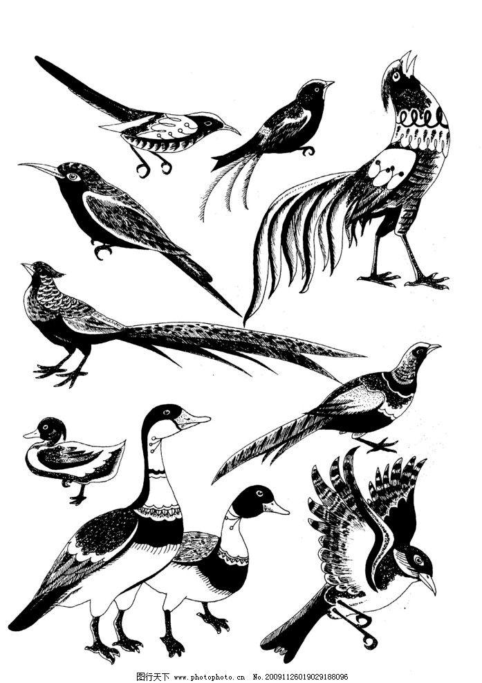 动物图案 白描 黑白图 动物 家禽 飞鸟 飞禽 绘画书法 文化艺术 设计