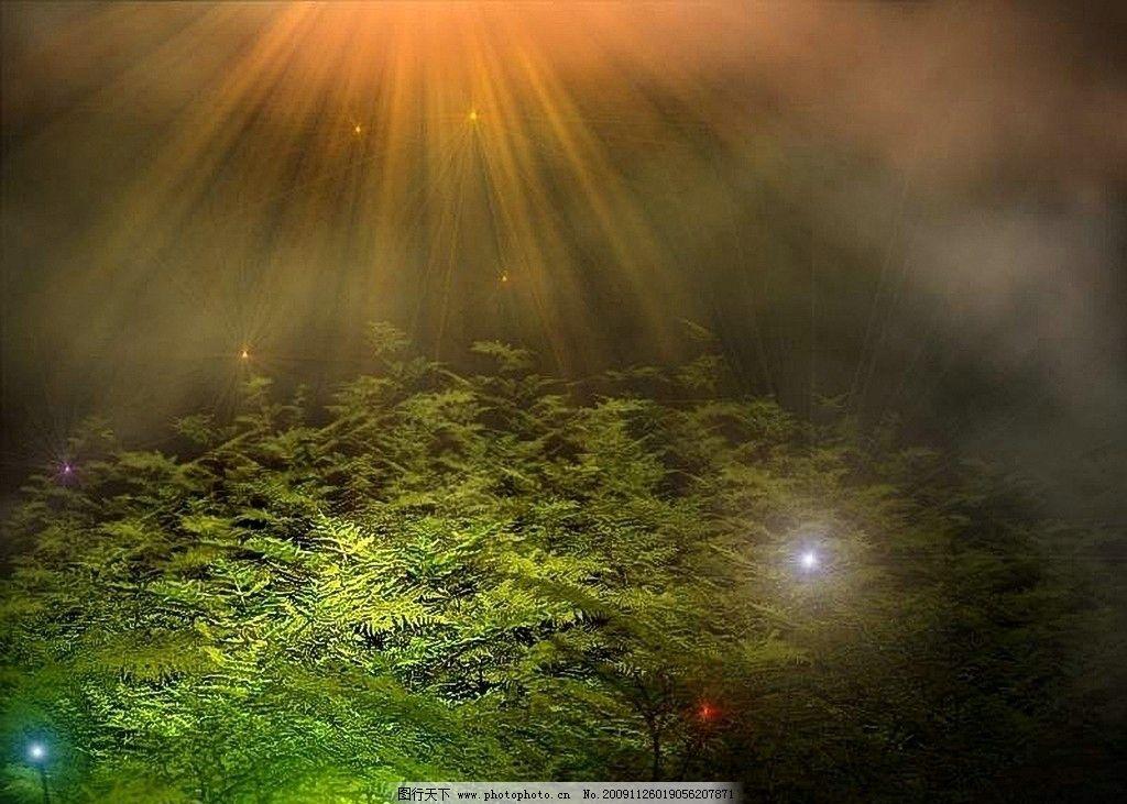 梦幻阳光 装饰画 阳光 梦幻森林 炫丽 绘画书法 文化艺术 设计 28dpi