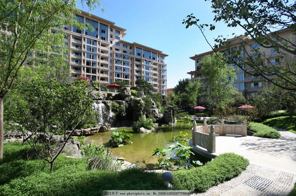 中式大宅园林景观设计 花园 荷花 假山 桂花 凉亭 遮阳伞 雪松 古树