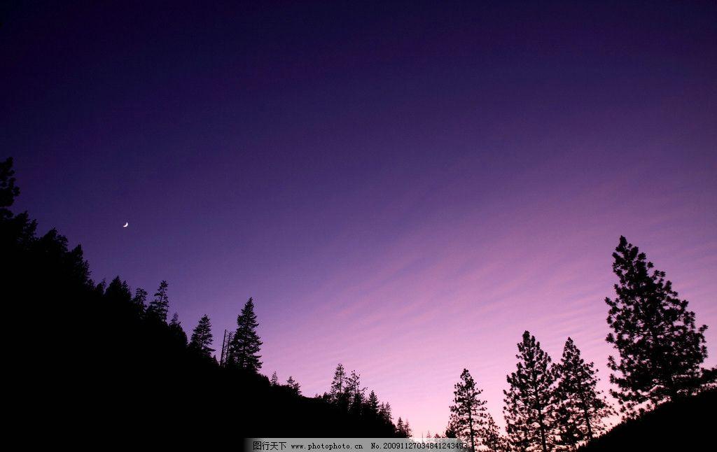清晨 月亮 月牙 天空 繁星 树木 自然风景 自然景观 摄影