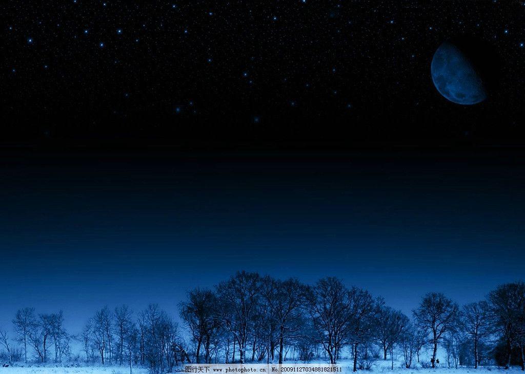 冬季月夜 冬天 雪 树 月亮 黑夜 自然风景 自然景观 摄影 72dpi jpg