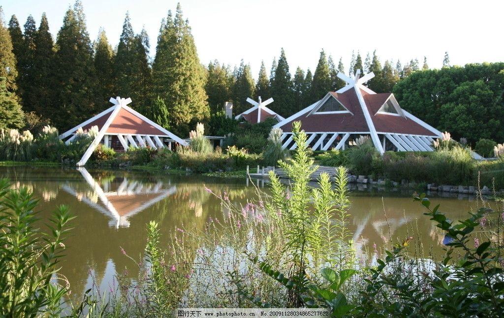 森林公园 崇明森林公园 树木 房子 自然风景 自然景观 摄影 72dpi jpg