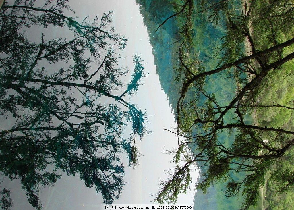 风景 山水 旅游 风光 拍照 自然 景观 九寨沟图片