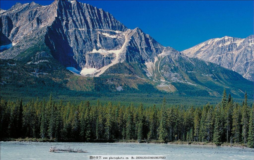 阿尔卑斯山 天空 森林 草原 河 流水 优美 自然风景 自然景观 摄影