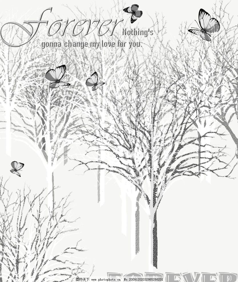 爱的白桦林 素色 树木 白桦林 蝴蝶 冬季 风景 雪景 psd分层素材 源