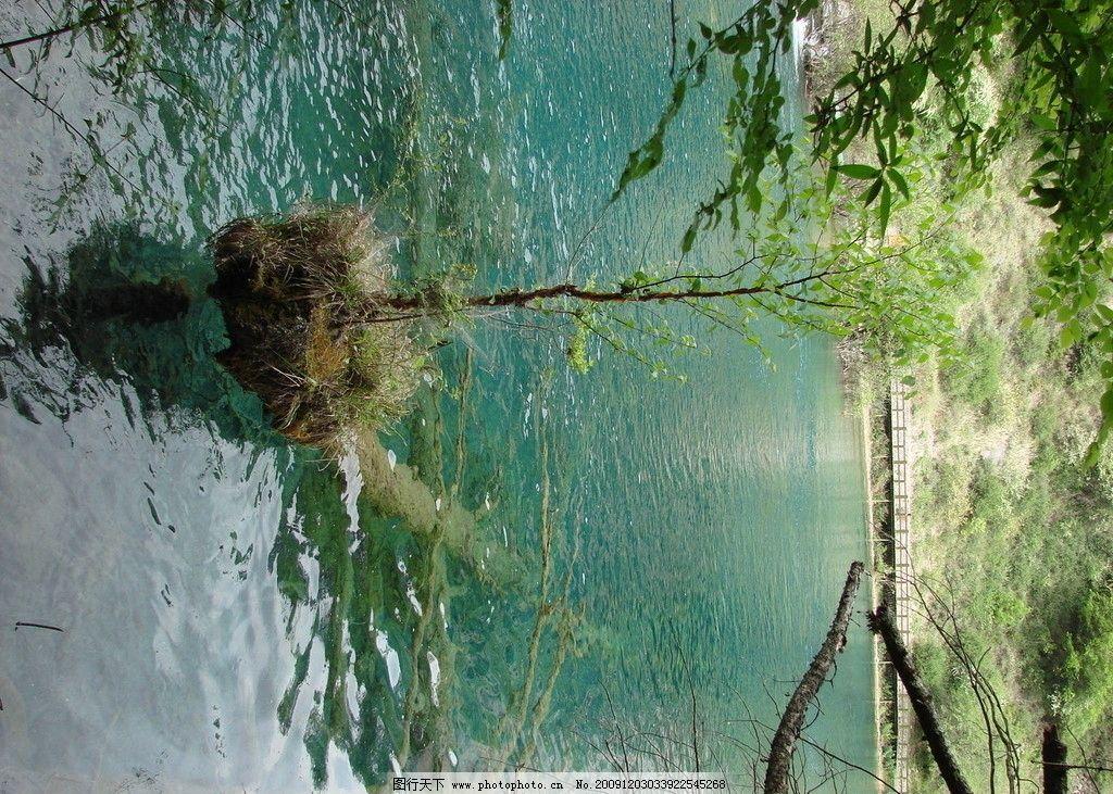 九寨沟/风景 山水 旅游风光拍照自然景观 九寨沟图片