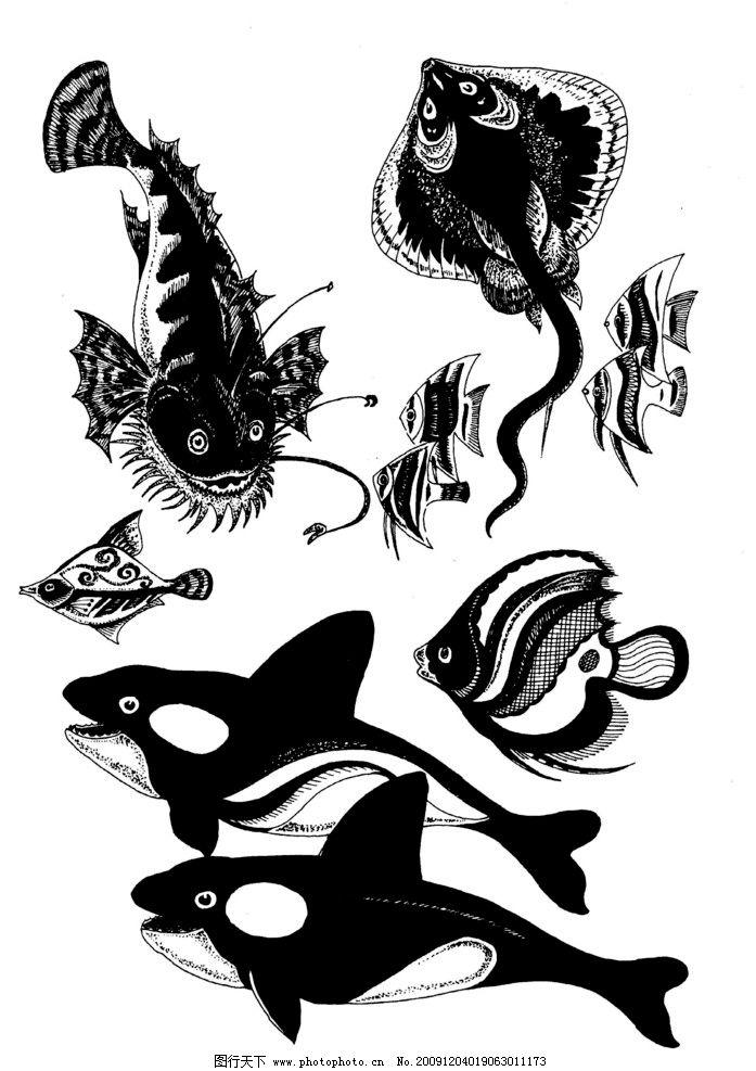 现代装饰动物图案05图片