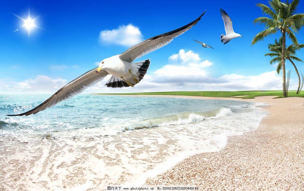 海鸥 草坪 沙滩 蓝天 白云 太阳 风景 psd分层素材 源文件 夏天清爽