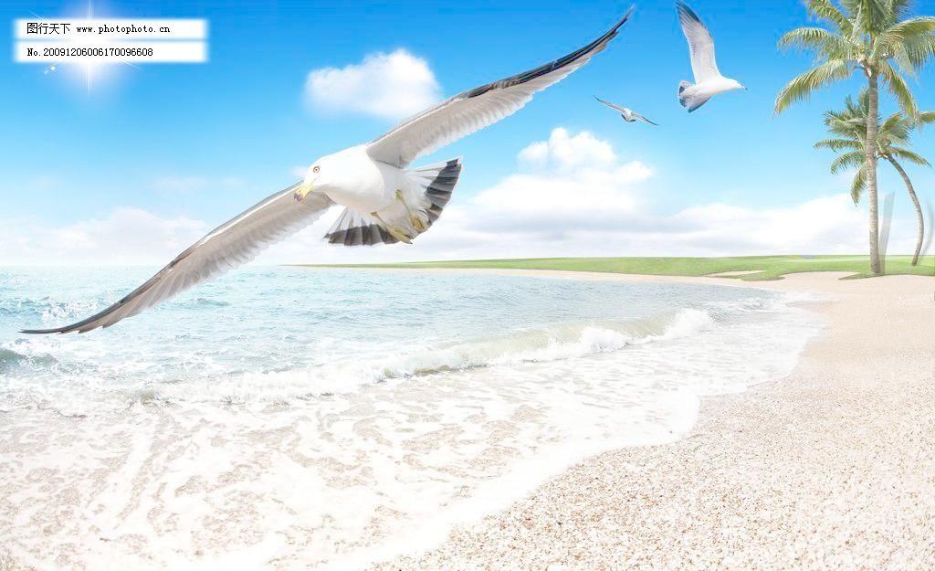 大海模板下载 大海 老鹰 椰树 海鸥 草坪 沙滩 蓝天 白云 太阳 风景