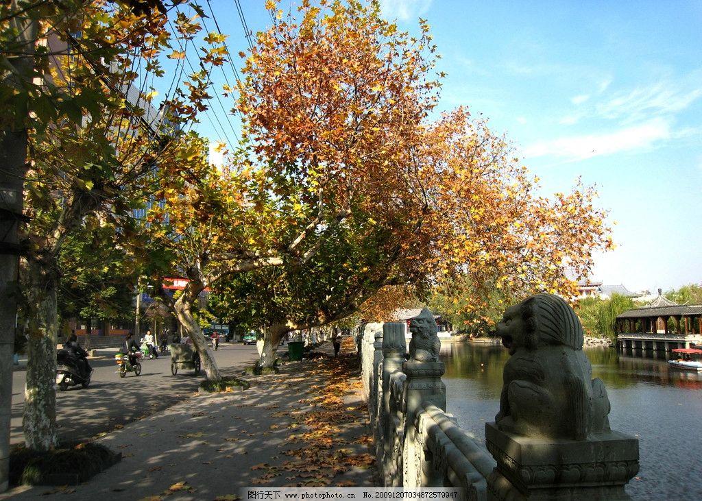 公园风景 园景 风景 公园 花木 树木 水波 绿化 清新 蓝天 环境优美