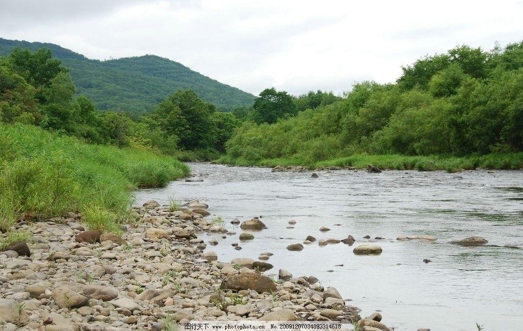 溪流 河流 瀑布 绿树 树林 森林 风景 旅游 石头图片