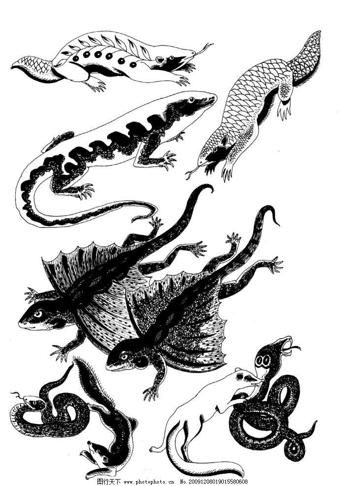 飞禽 鱼图案 装饰图案183现代装饰动物图案 绘画书法 文化艺术 设计 3