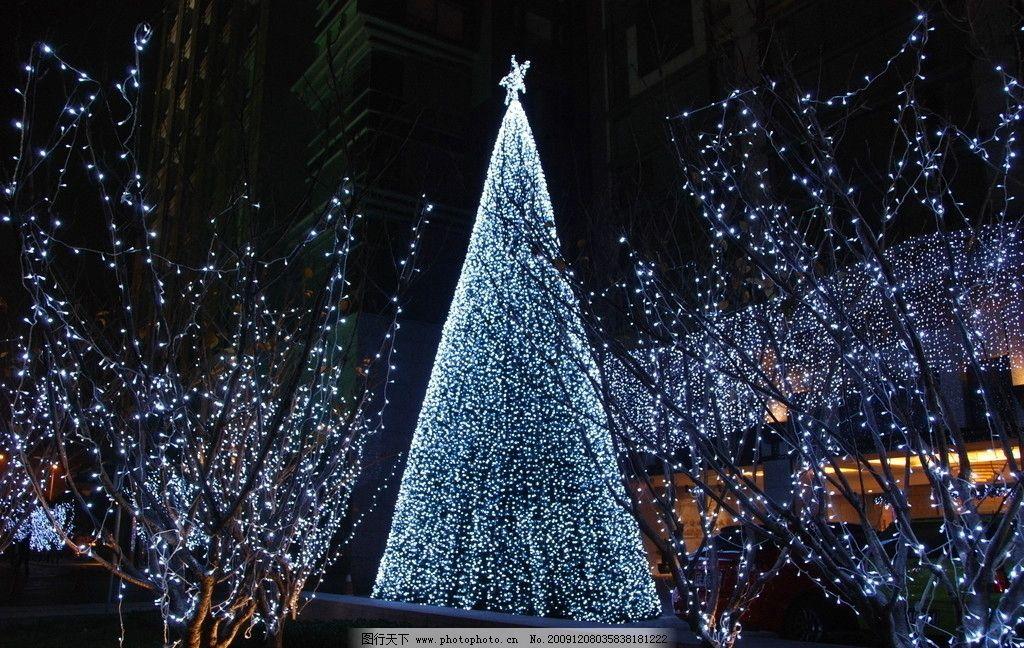 银色圣诞树图片
