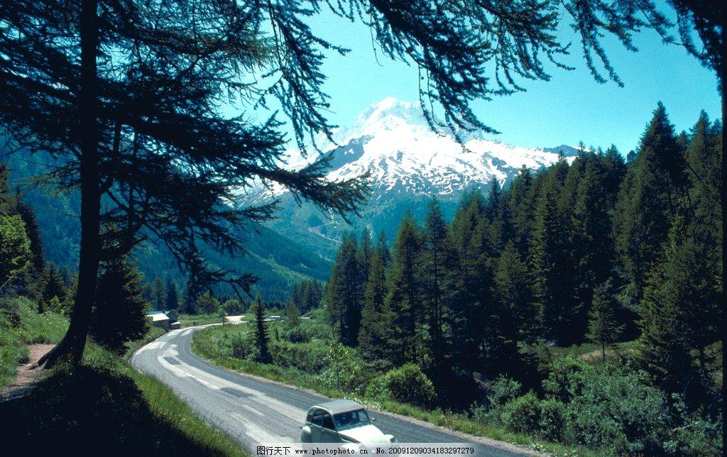 自然风景 松树 公路 汽车 车辆 马路 树林 森林 雪山 郊野