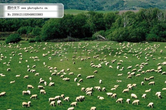 田园风光-004 田园风光图片 图片素材 风景生活旅游餐饮