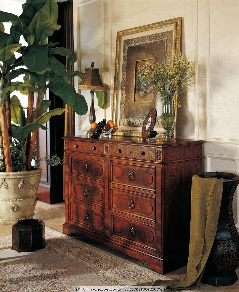 欧式柜子 家具 镜子 绿化 深色 花瓶 家居生活 生活百科 摄影